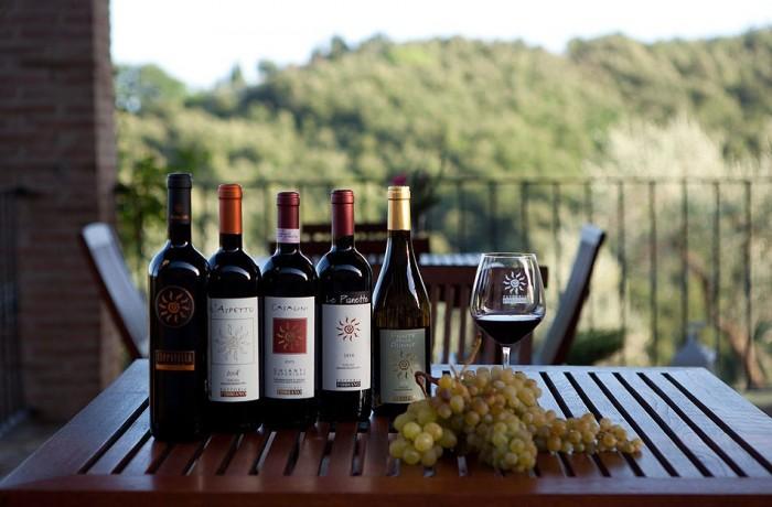 Fattoria Fibbiano, i vini