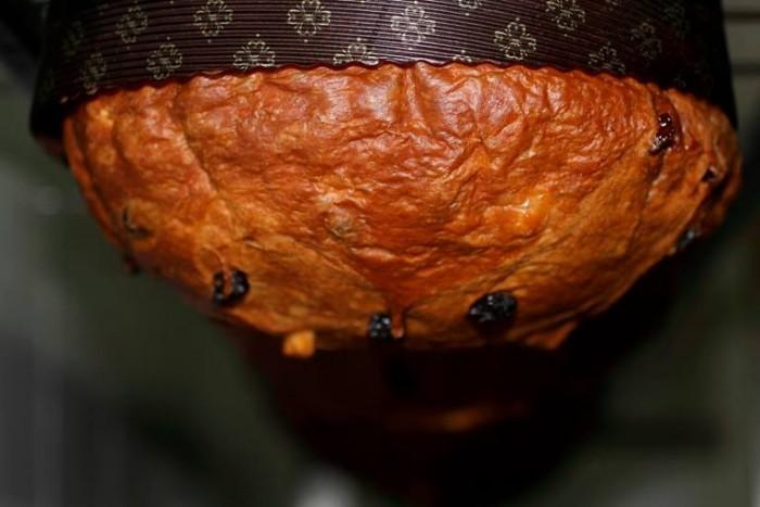 Pepe, panettone alle albicocche