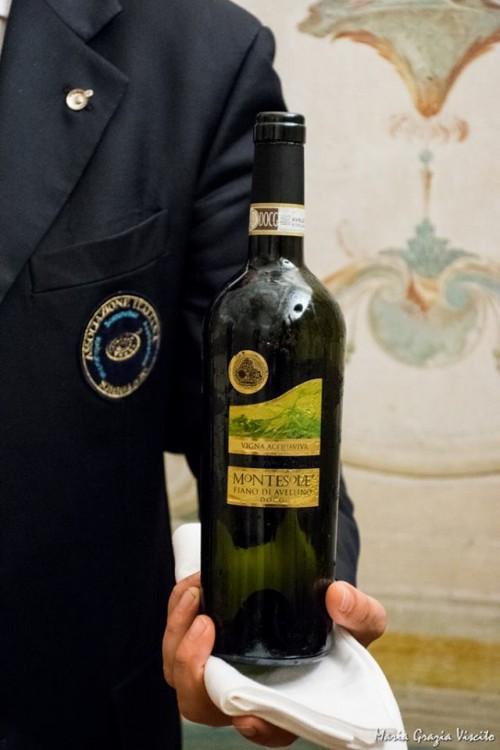 Vigna Acquaviva Fiano di Avellino 2013 Montesole