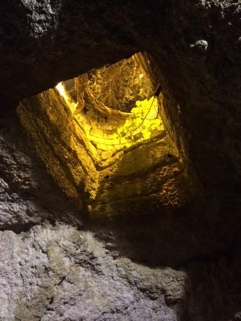 il Fonte Pliniano