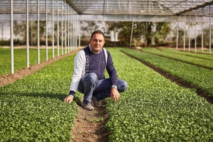 Alfonso Altamura Az.Agricola