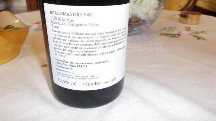 Controetichetta Borgomastro Colli di Salerno Rosso Igt 2009 Lunarossa