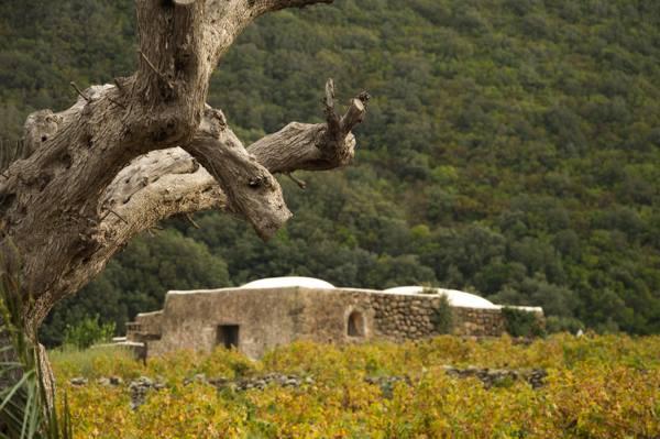 Pantelleria, scorcio