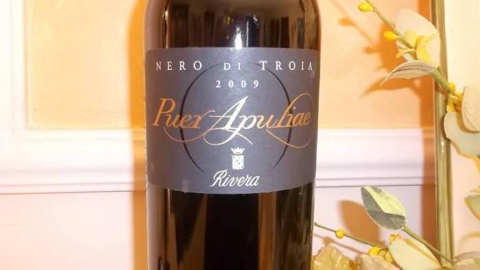 Puer Apuliae Nero di Troia Castel del Monte Doc 2009 Rivera