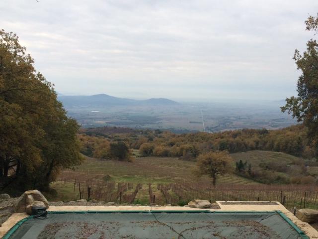 Valdonica, la vista