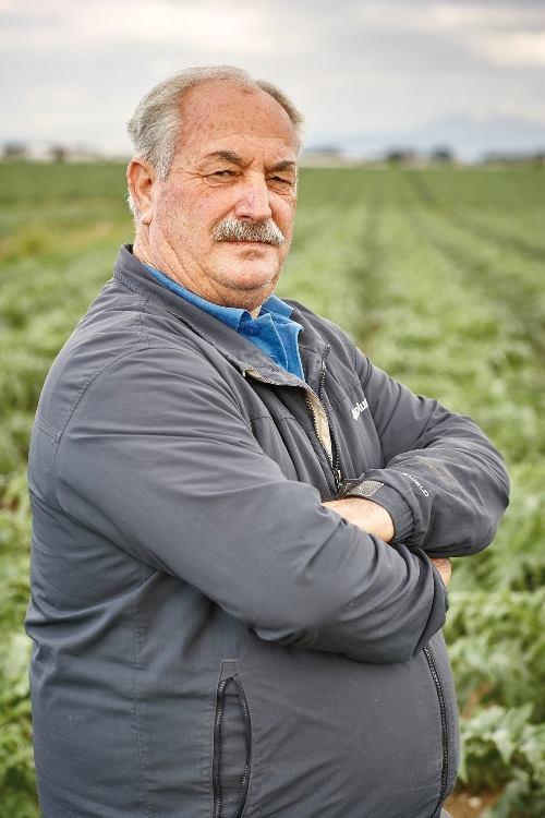 Vistocco Salvatore Az. Agricola