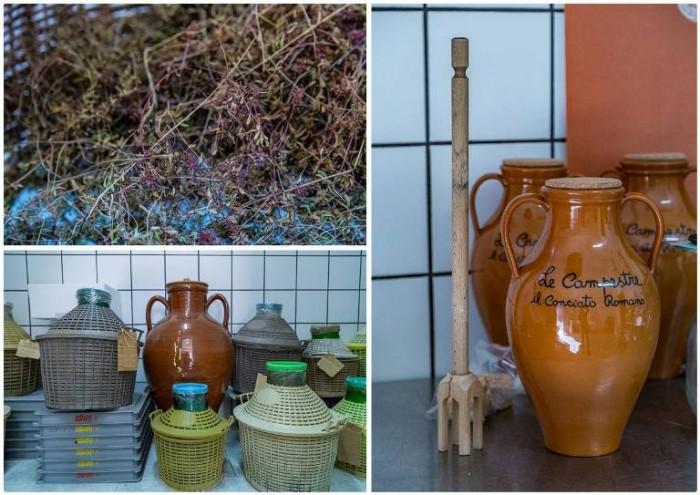 Conciato Romano, il timo serpillo della vallata utilizzato per la concia che avverrà in damigiane di vetro o in anfore di terracotta
