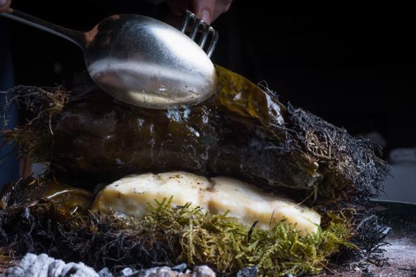 Osteria della brughiera, rombo dell'Adriatico cotto nel muschio (Ph. Riccardo Melillo)