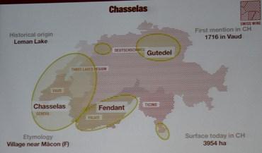 Swiss Wines,  Chasselas