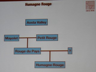 Swiss Wines,  Humagne Rouge