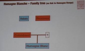 Swiss Wines,  Humagne blanc