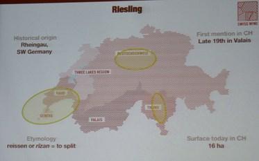 Swiss Wines,  Riesling