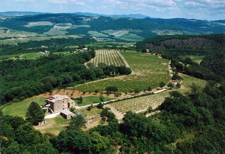 l'azienda Salvioni vista dall'alto - immagine tratta dal sito dell'azienda Salvioni