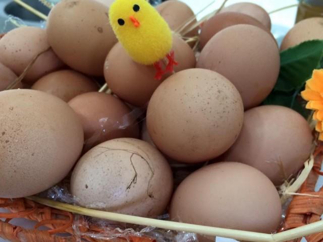 Ponte Molinello, le uova fresche