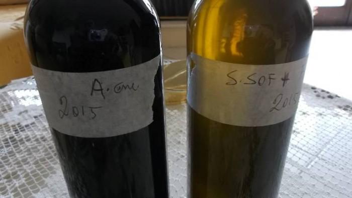 Silvaplantarium, bottiglie non etichettate di Aglianicone e di Santa Sofia 2015