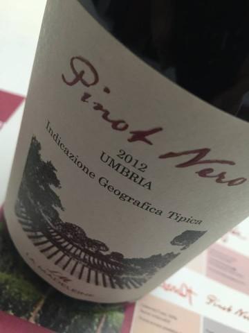 Vini D'Alema, I vini della serata