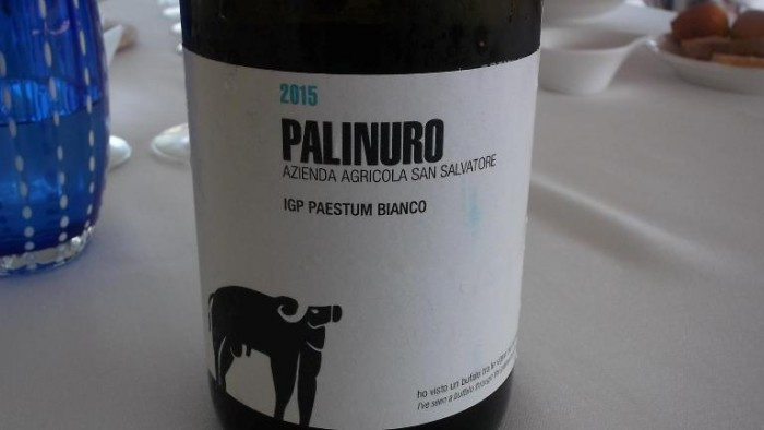 Palinuro Igt Paestum Bianco 2015 San Salvatore 1988