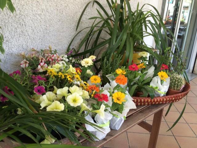 ghiottone fiori esterno