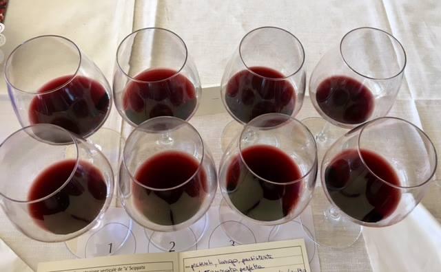 la prima verticale di a' Scippata, i vini degustati