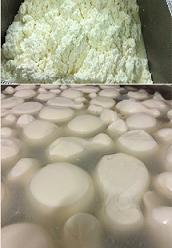 IL VALICO - Produzione del fior di latte