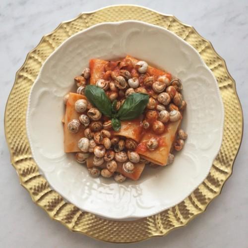 Paccheri di Gragnano al sugo di lumache siciliane.
