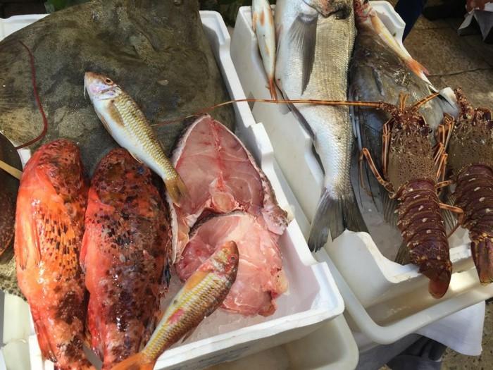 Al Pescatore Bari, il pescato