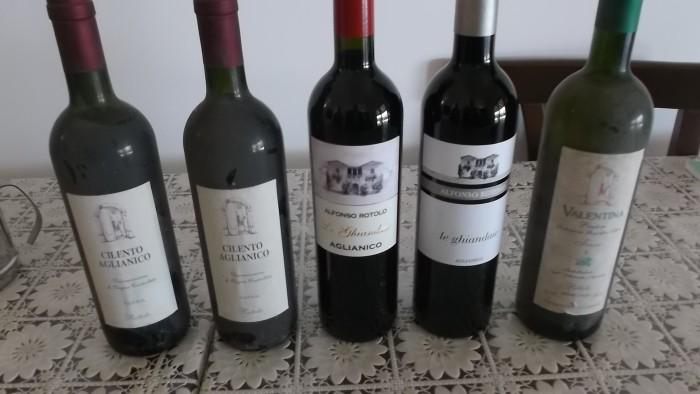 Azienda Alfonso Rotolo Vecchi e nuovi vini