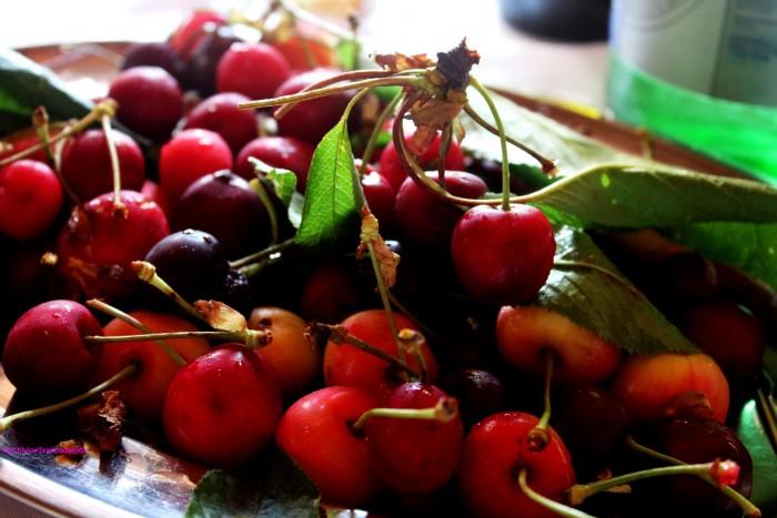 Le ciliegie raccolte in azienda - al naturale