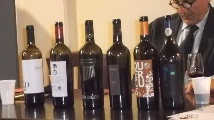E' tempo di Aglianicone Bottiglie dei vini degiustati