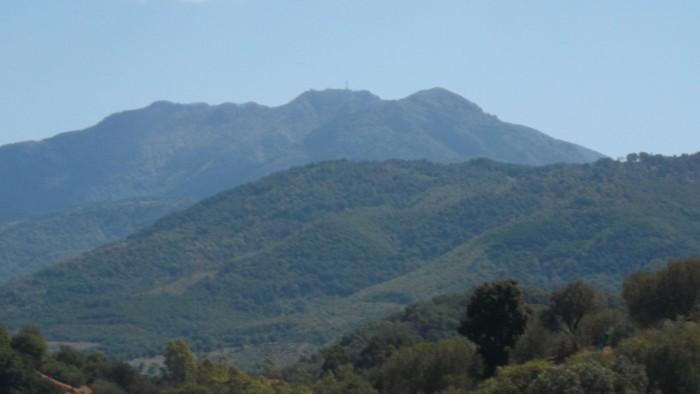 Monte Gelbison visto dall'azienda Ermma