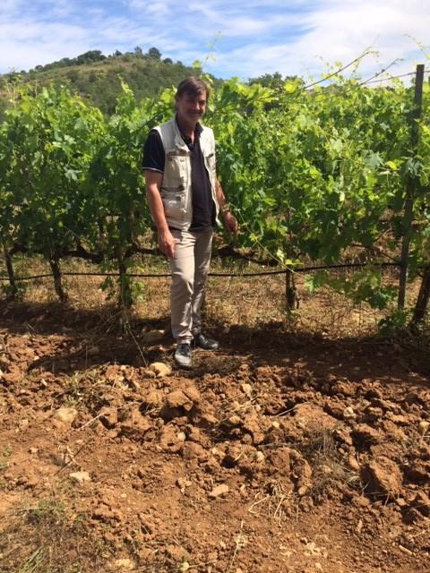 Stefano Frascolla tra le vigne