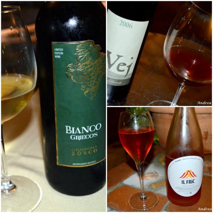 Il Foro dei Baroni a Puglianello, i vini