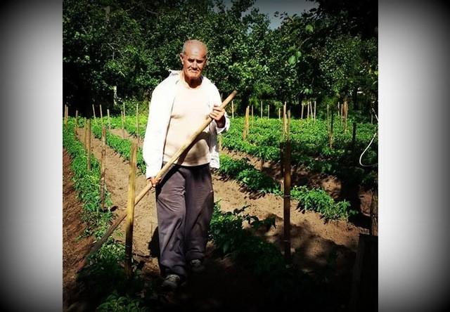 Terraviva il lavoro nei campi
