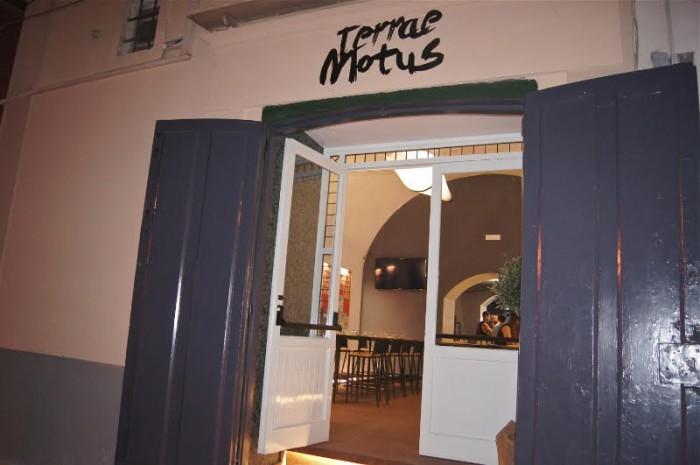 Terrae Motus, ingresso