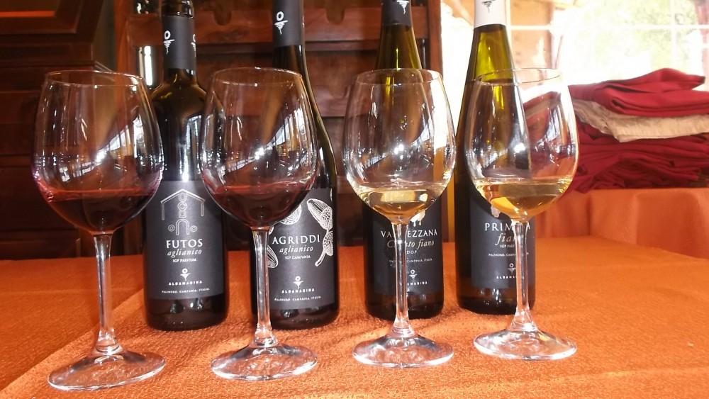 Degustazione vini di Albamarina