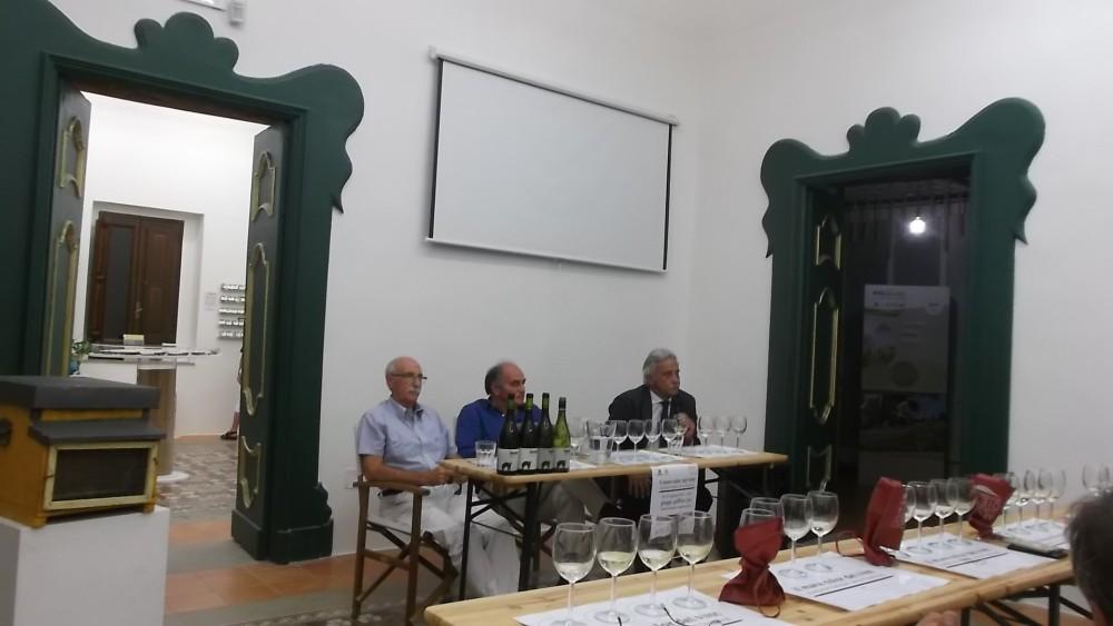 Mediterranean Wine Festival di Pioppi da sx Enrico Malgi, Peppino Pagano e Francesco Continisio