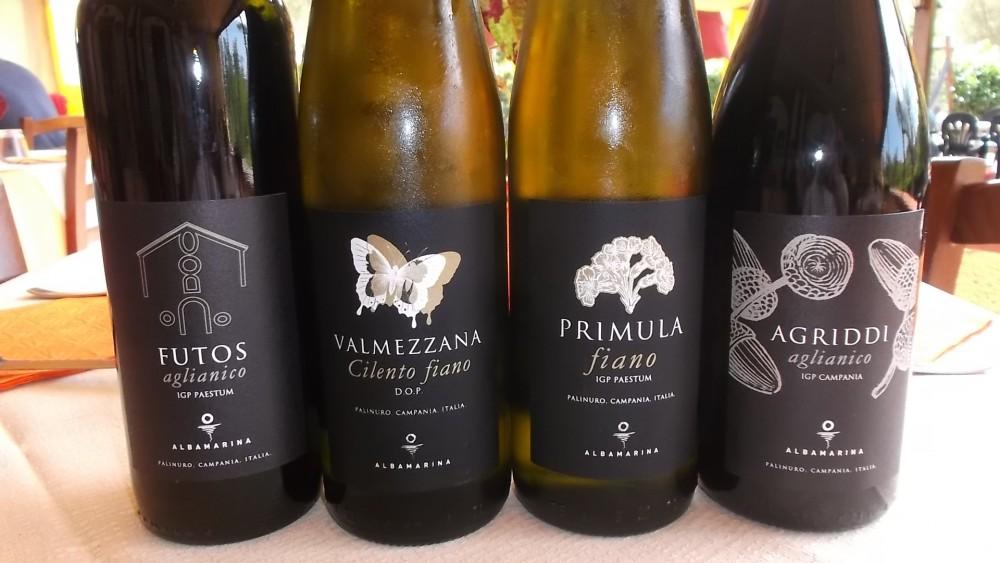 Nuove annate vini di Albamarina