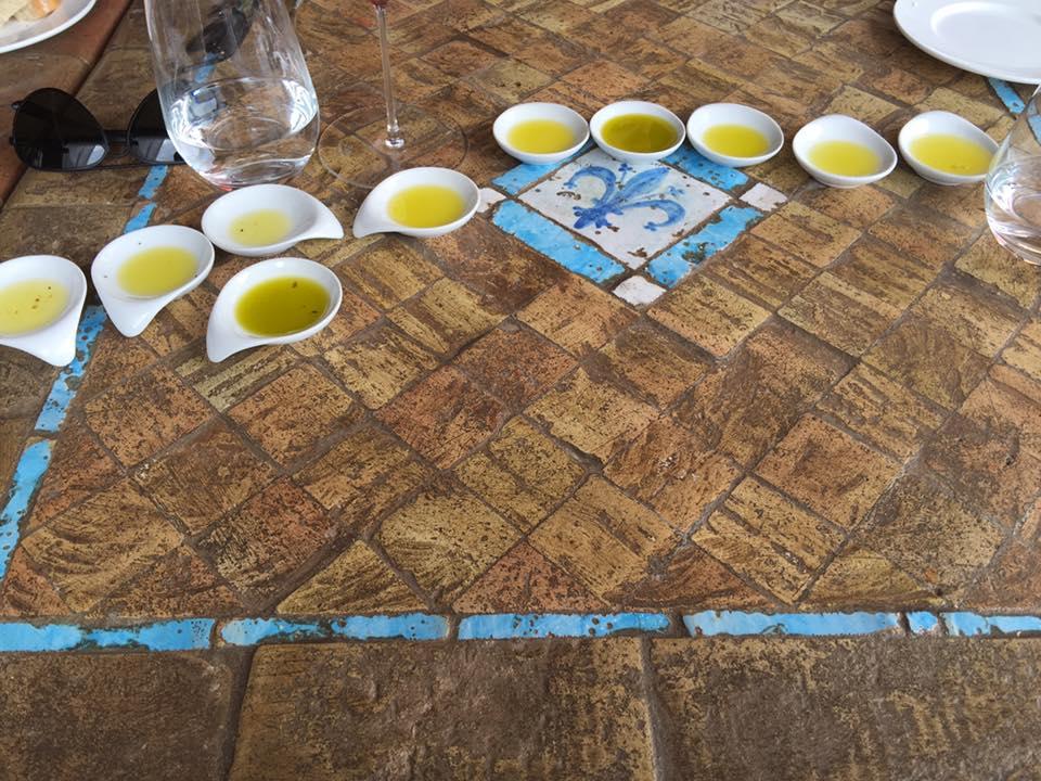 Signum, degustazione degli olii