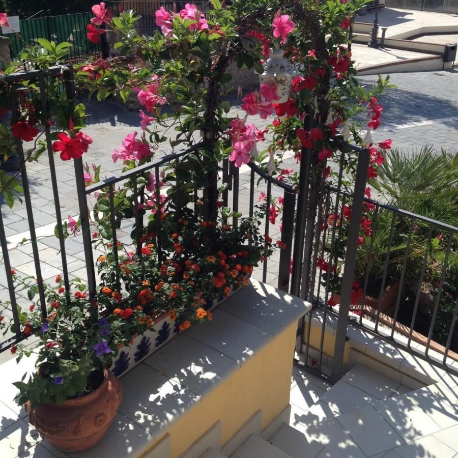 ristorante K, terrazzo fiorito