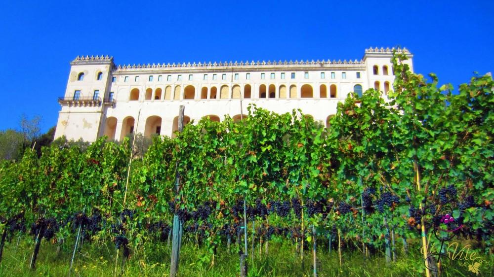 San Martino, vista della Certosa
