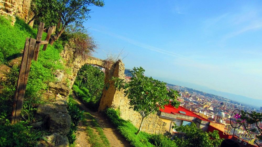 San Martino, campagna e citta'