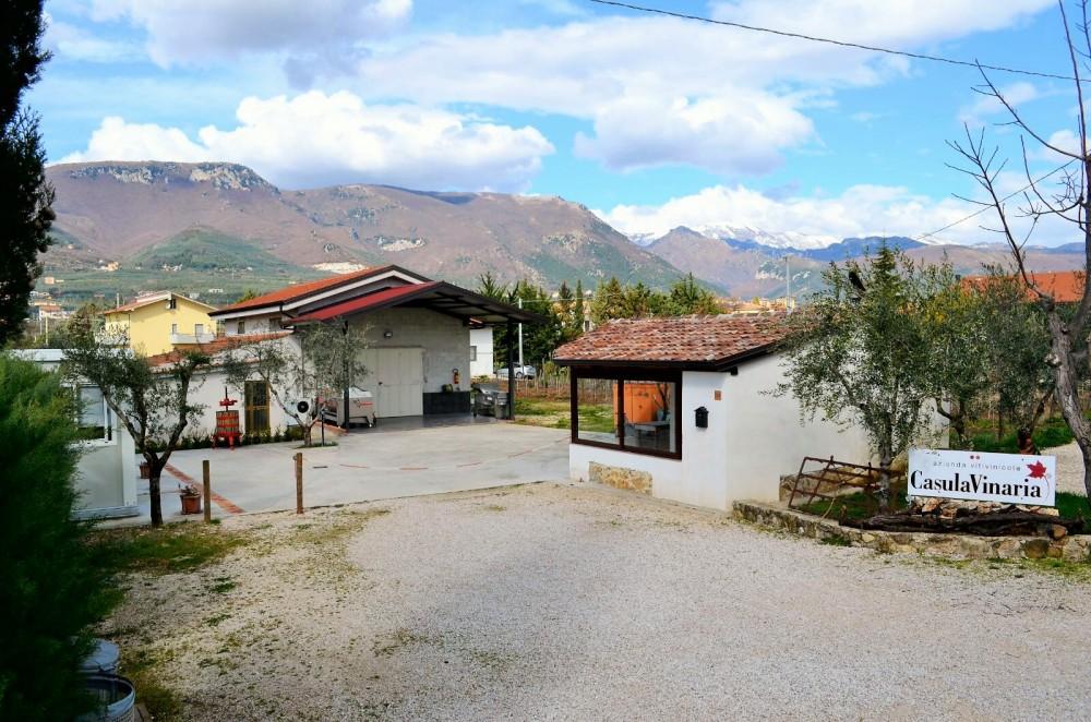 Azienda Casula Vinaria