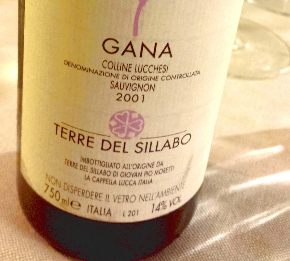 Gana 2001, Terre del Sillabo