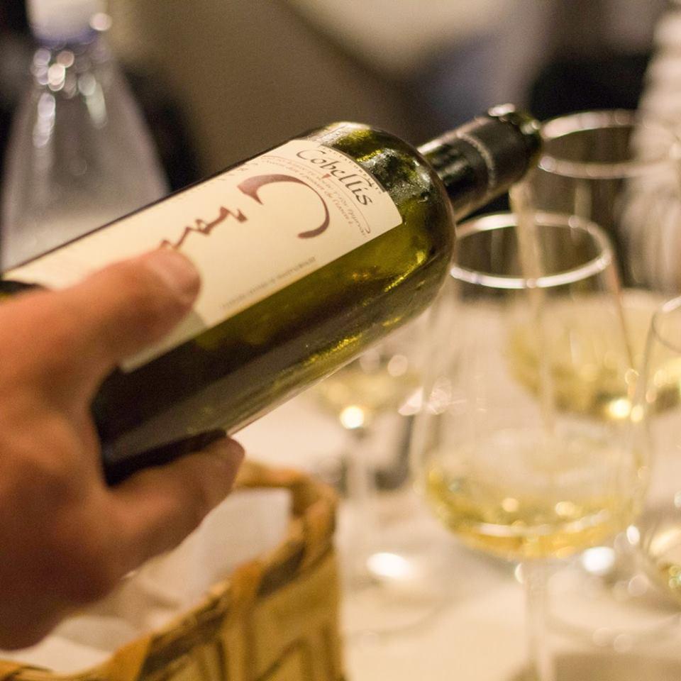 Le Ricette del Cilento in Calabria, i vini Cobellis