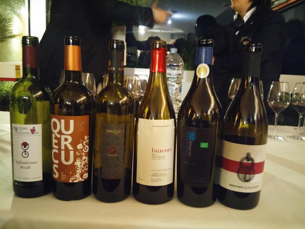 Bottiglie di Aglianicone degustate a Paestum per il Vino del Tuffatore