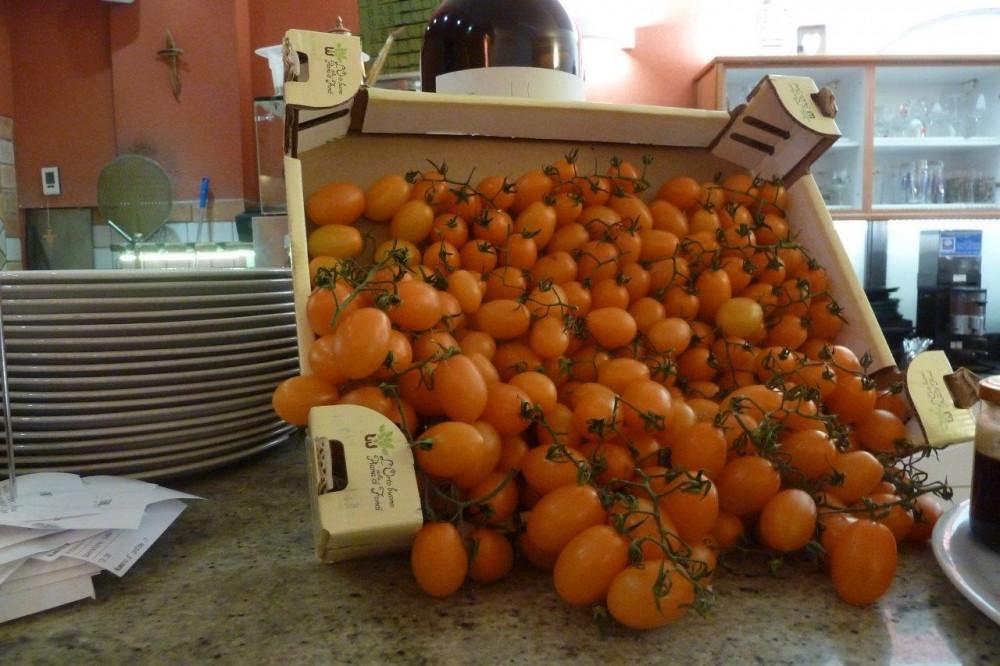 Lipen, pomodori