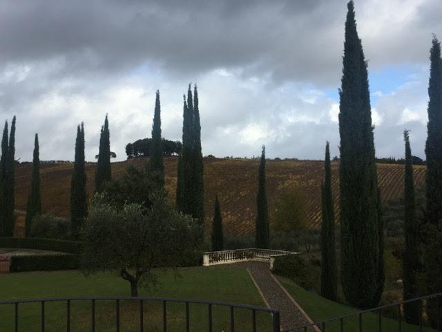 Azienda Agricola Tolaini