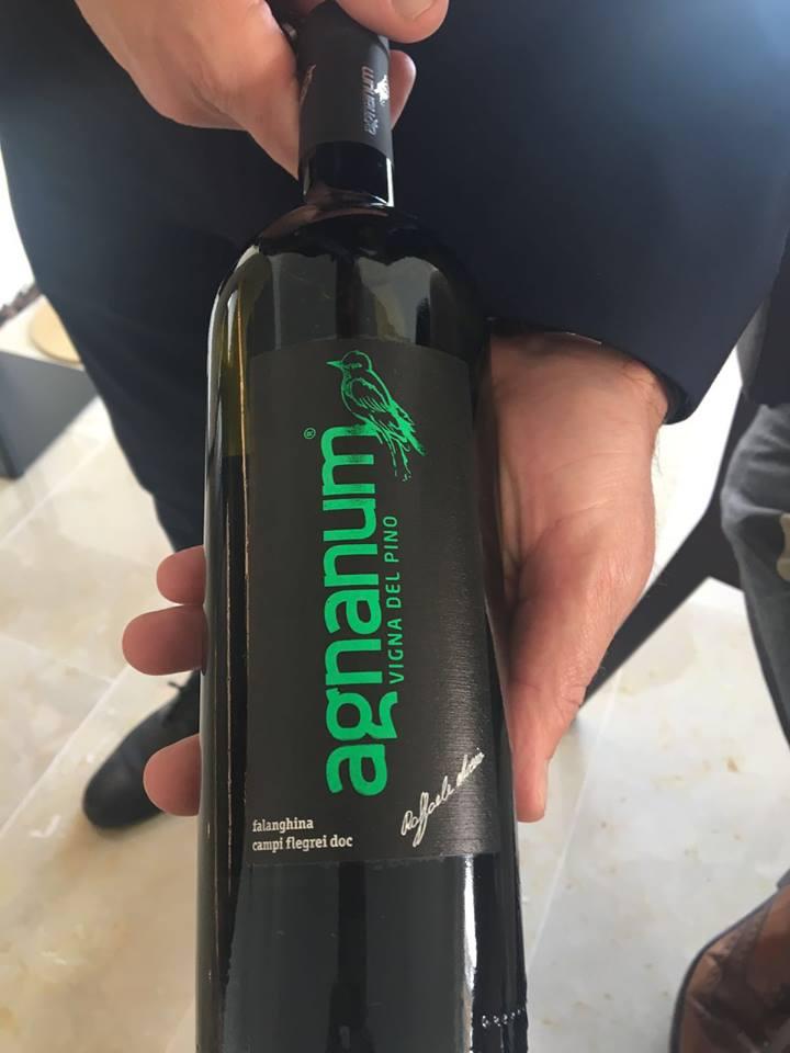 Vigna del Pino 2015 Agnanum