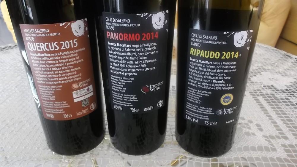 Controetichette Vini Tenuta Macellaro