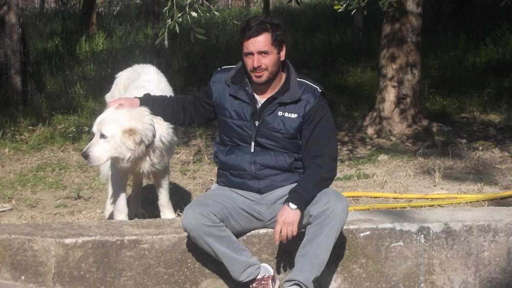 Pippo Greco